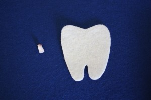Tooth and Tooth