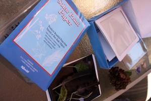 The Solar Kit